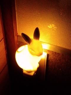 うさぎライト3