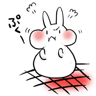 hoyumochi.jpg
