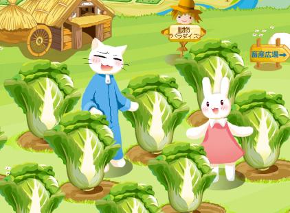 サンシャイン牧場-白菜畑